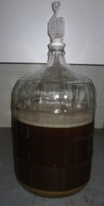 3.5 gallon starter