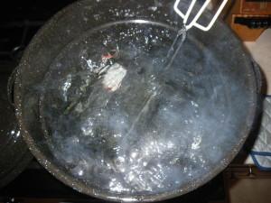 Bubble, bubble . . .